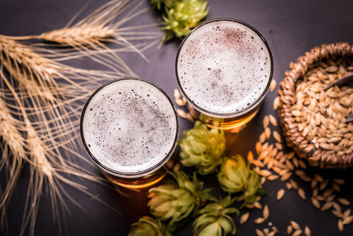 ビールの原料